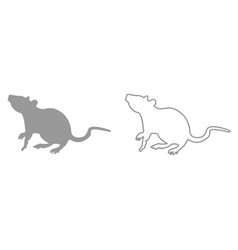 Rat it is black icon vector
