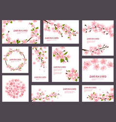 sakura blossom cherry greeting cards with vector image