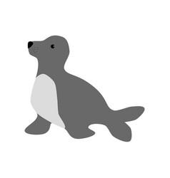 sea lion vector image