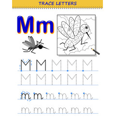 Tracing letter m for study alphabet printable vector