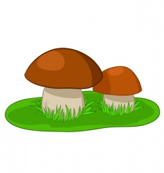 two mushrooms with green grass vector image
