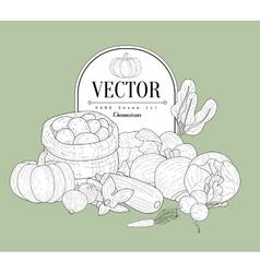 Vegetables Collection Vintage Sketch vector