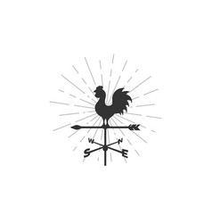 weather vane and sunburst background vector image