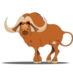 Buffalo cartoon vector image vector image