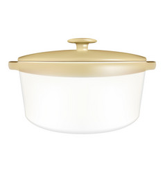 white ceramic saucepan with cover isolated on a vector image