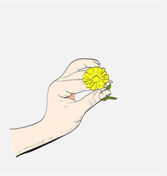 Female hand with camomile vector
