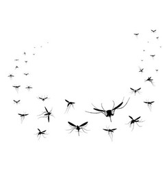 flying mosquitoes silhouettes group flying vector image