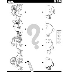 Match halves cartoon sheep pictures coloring vector