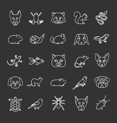 Pets chalk icons set vector