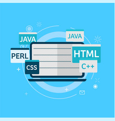 programming code on laptop banner vector image