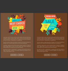 Special offer and best choice vector