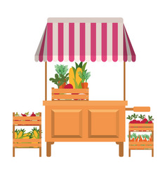 Store kiosk with vegetables isolated icon vector