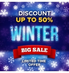 Big Winter Sale promotion banner template vector image vector image