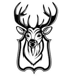 a stag head as a trophy vector image vector image