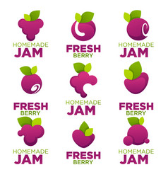 raspberry cherry blueberry berry jam and fresh vector image vector image
