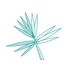 blue silhouette image branch with thorns as leaves vector image vector image