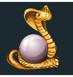 Majestic Golden Cobra with pearl for your design vector image vector image
