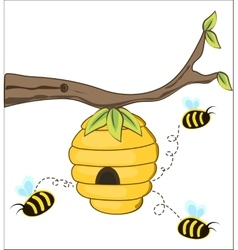 The bees fly out of a beehive vector image