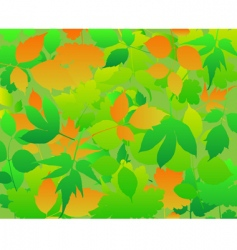 abstract background leaves vector image