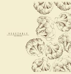 Broccoli or cauliflower background vector
