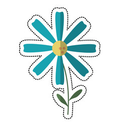 cartoon daisy flower decoration image vector image