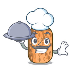 Chef with food fried tempeh snack above cartoon vector