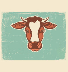 Cow head farm animal vintage poster of vector