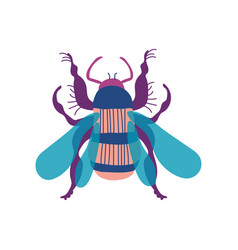 cute colorful wasp insect top view vector image