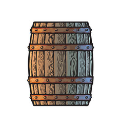 old wooden barrel in vintage engraving style side vector image