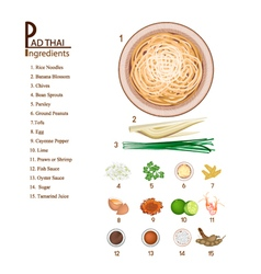 Pad Thai or Stir Fried Noodles Recipe vector