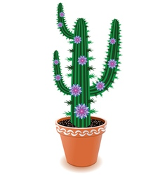 pot cactus vector image