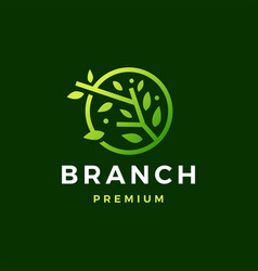 round tree branch leaf logo icon vector image