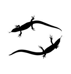 sticker on car reptile silhouette lizard vector image