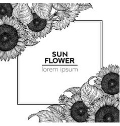 Sunflower vintage design template sunflower frame vector