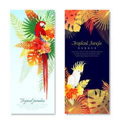 Tropical parrots vertical banners vector