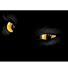 Yellow cat eyes in the dark vector image