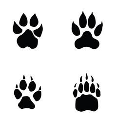 lion tiger wolf bear footprint vector image vector image
