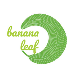 Banana green leaf logo vector