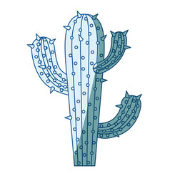blue shading silhouette of cactus of three vector image
