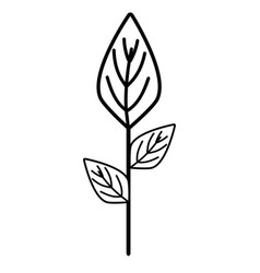 Line ecology plants with leaves icon vector