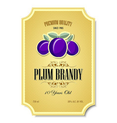 premium quality 10 years old plum brandy vector image