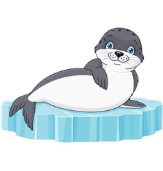 Seal vector image