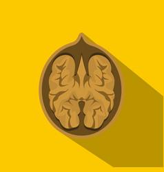 walnut icon flat style vector image
