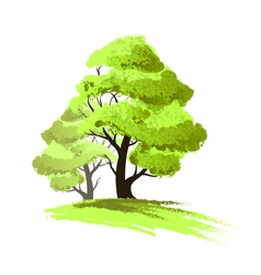 Two trees drawing isolated vector image vector image