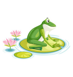 A frog on lily pad vector