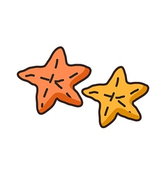 A pair of starfishes vector