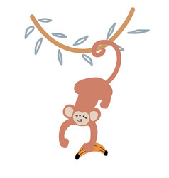 cute cartoon monkey hanging down from a liana vector image
