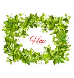 hops frame of leaf and cone for brewery design vector image