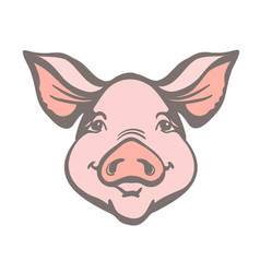 Pig head farm animal pink graphic vector