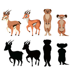 set of exotic animal character vector image